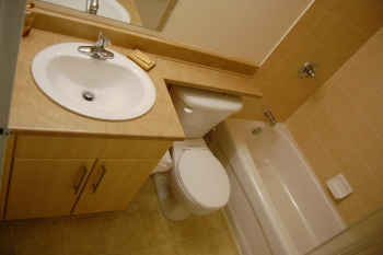 Renovation project planning part 2 creating a statement for Small bathroom goals