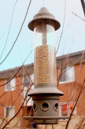 squirrel proof bird feeder - Eliminator form Wild Birds Unlimited