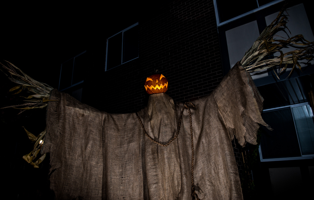 pumpkin scarecrow finished