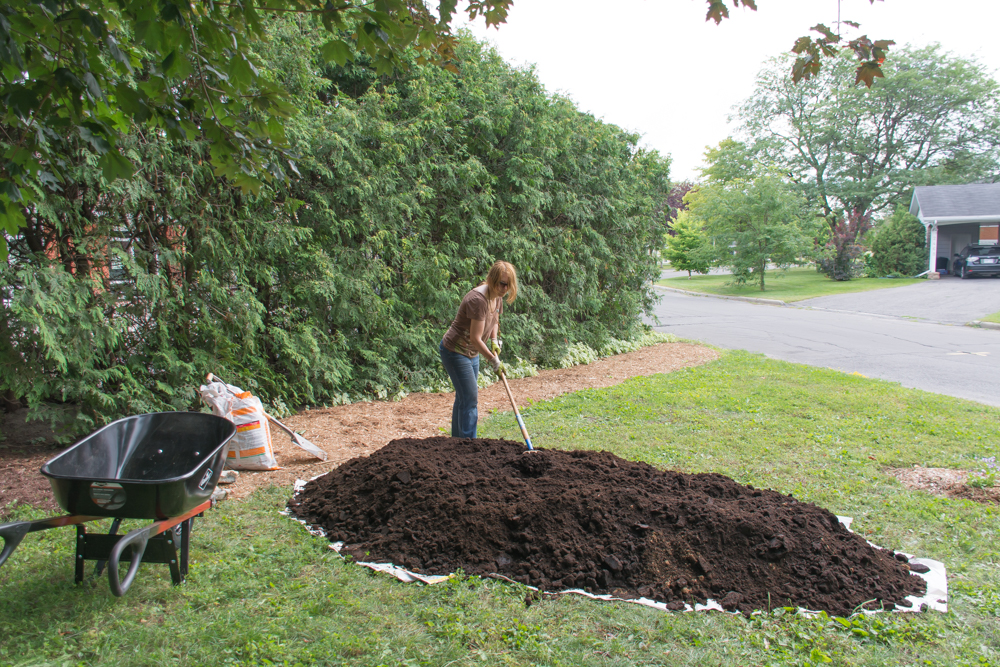 Creating a raised bed: adding soil
